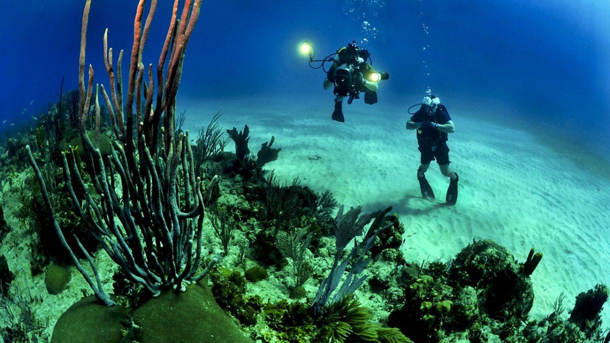 一輩子一定要玩一次!全球潛水聖地精選TOP5