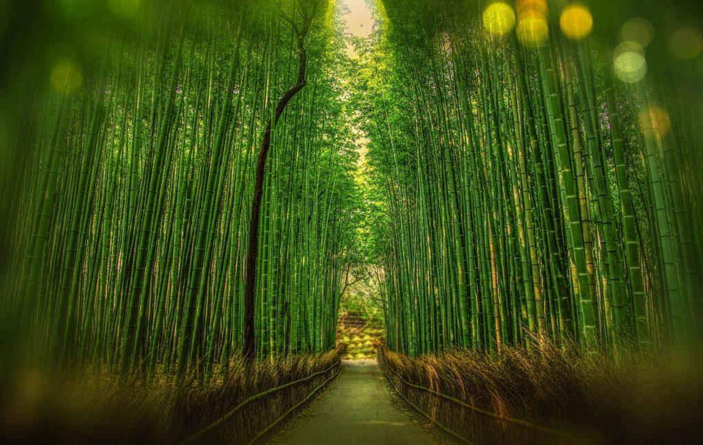 日本京都景點