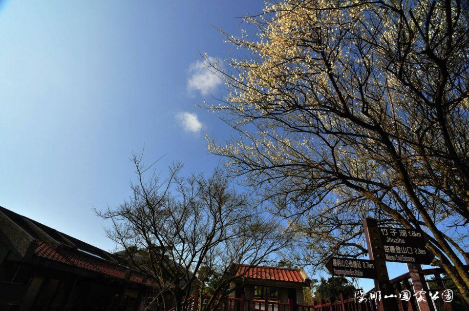 陽明山國家公園遊客中心旁