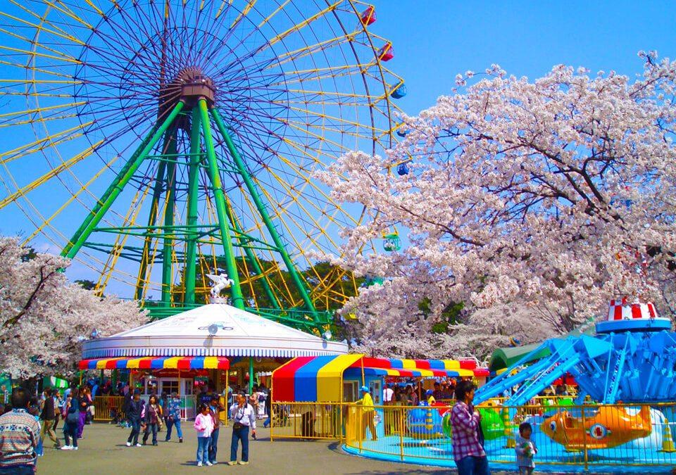 櫻花季來啦!日本關東賞櫻景點地圖大公開