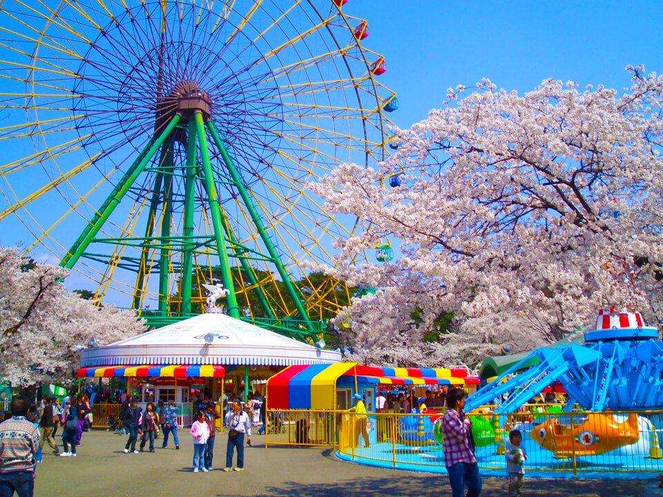 華藏寺公園花祭