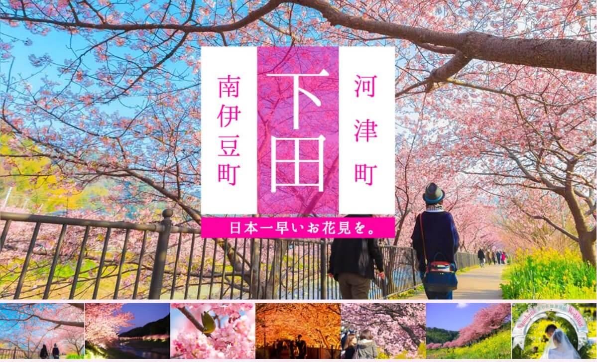 河津櫻花季