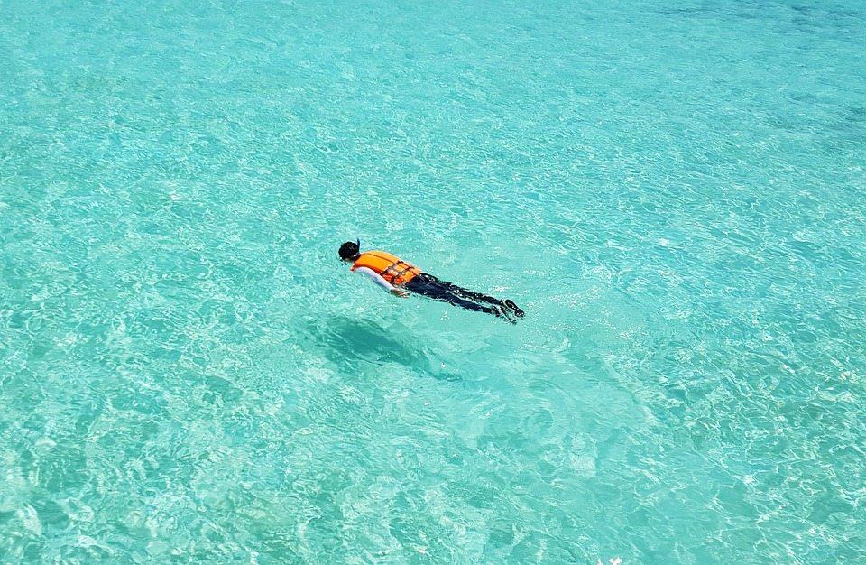 夏天就是要玩水R!2020 台灣北部浮潛地點大搜密
