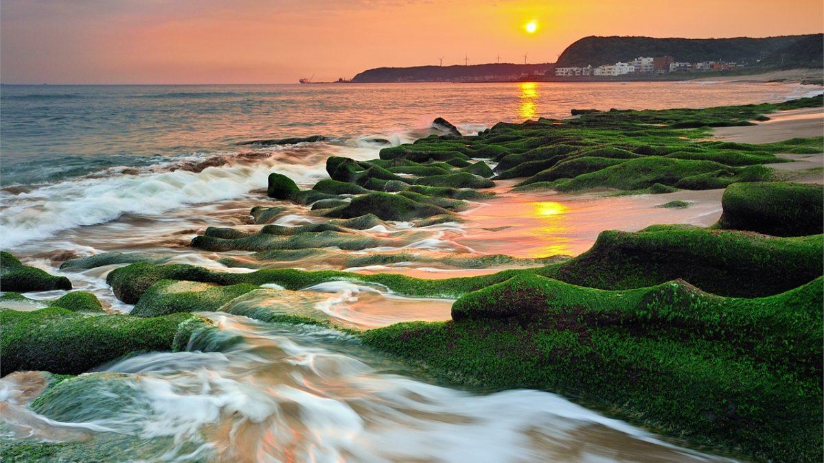 季節限定!北海岸老梅綠石槽一日遊:交通、周邊景點這樣玩