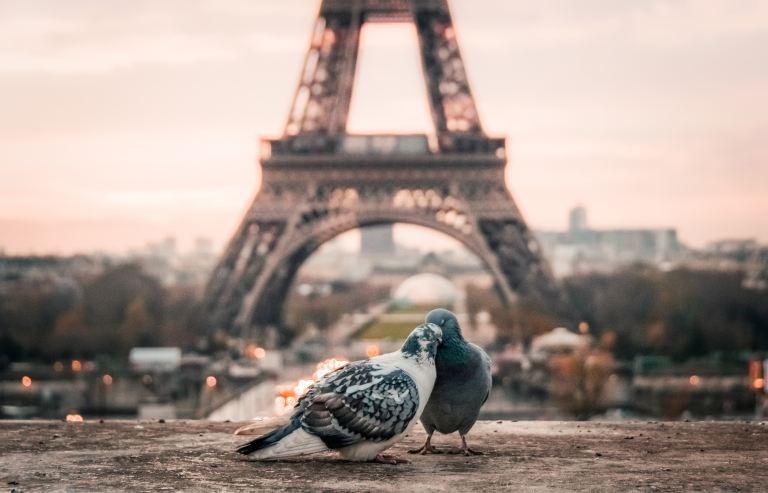 法國旅遊必讀!巴黎自由行須知,這樣保護自己才安全
