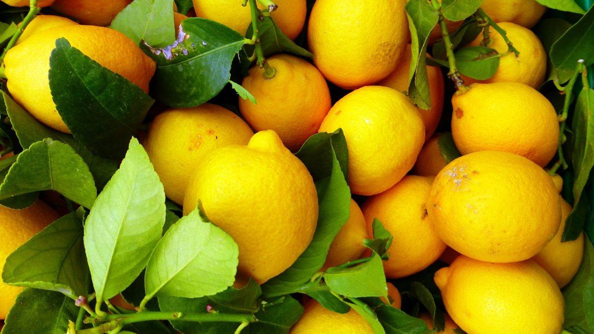 酸甜檸檬控看過來!網購檸檬甜點人氣推薦