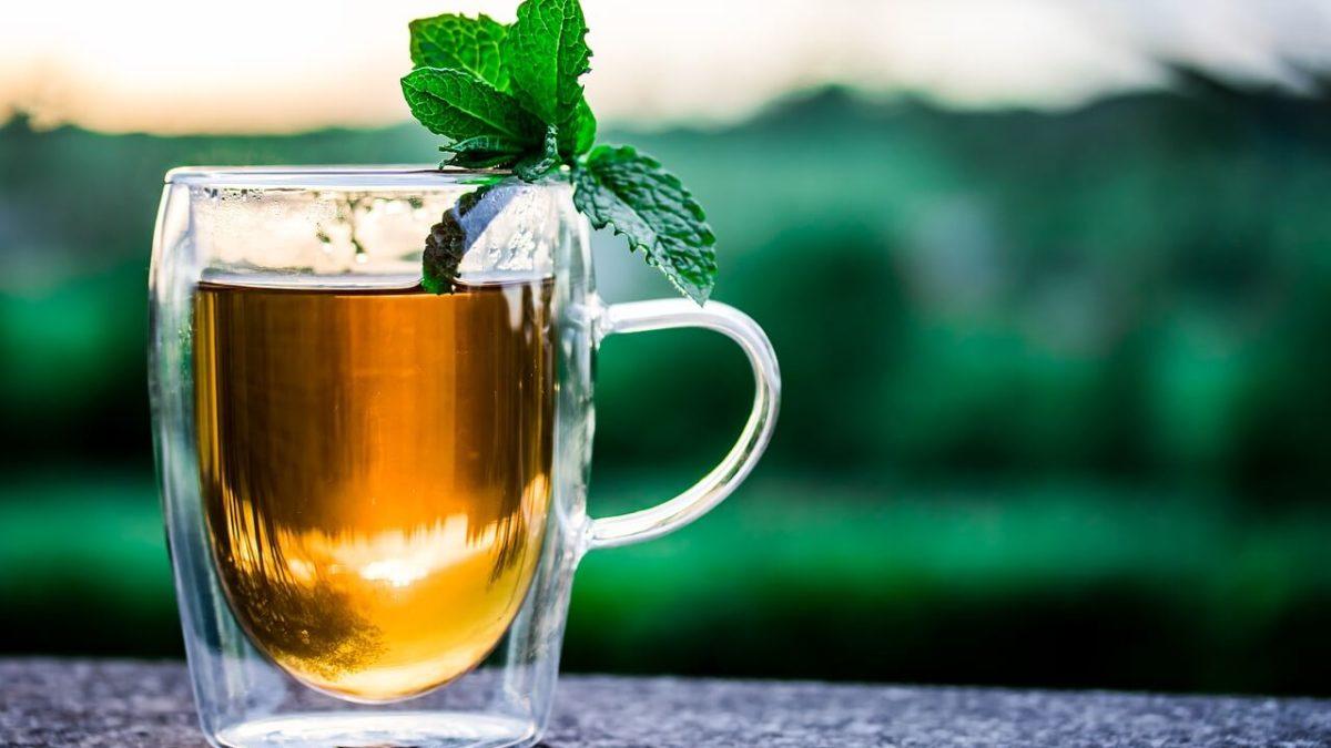 補氣順便消暑氣!5個夏天喝茶注意事項,養生保健不傷身
