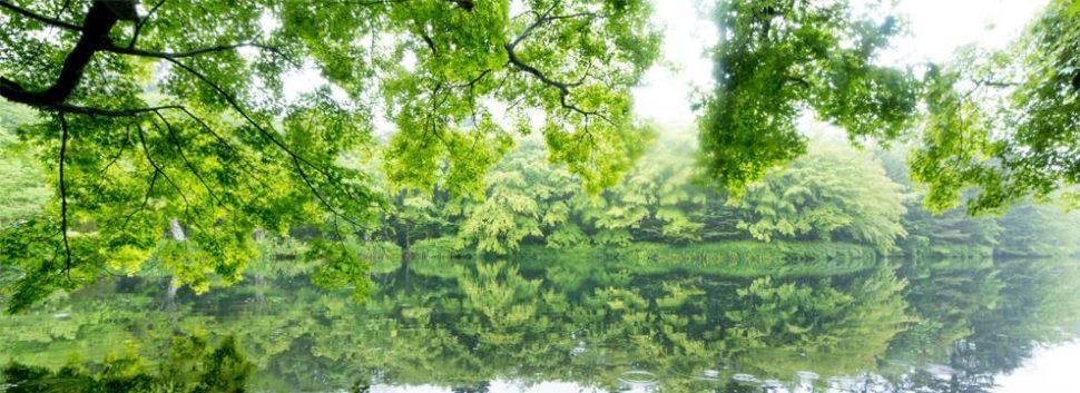 日本夏天避暑首選!輕井澤一日遊交通 & 景點推薦懶人包