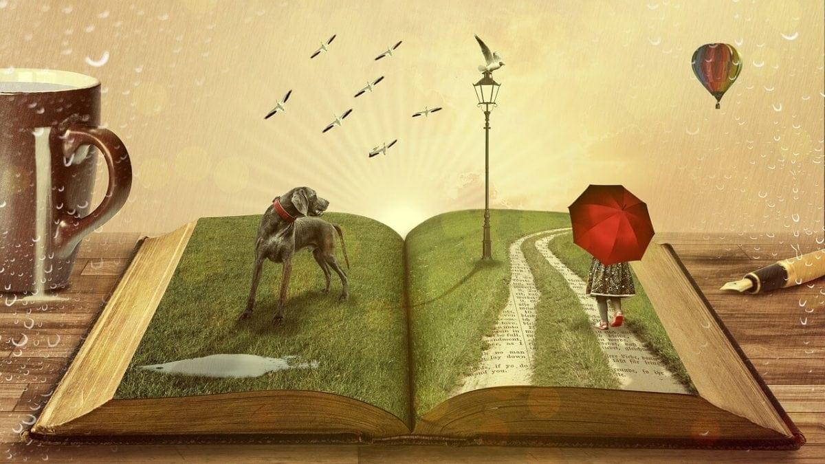 溫暖人心的斑斕世界:5本給大人看的繪本推薦,探索人生難題好療癒