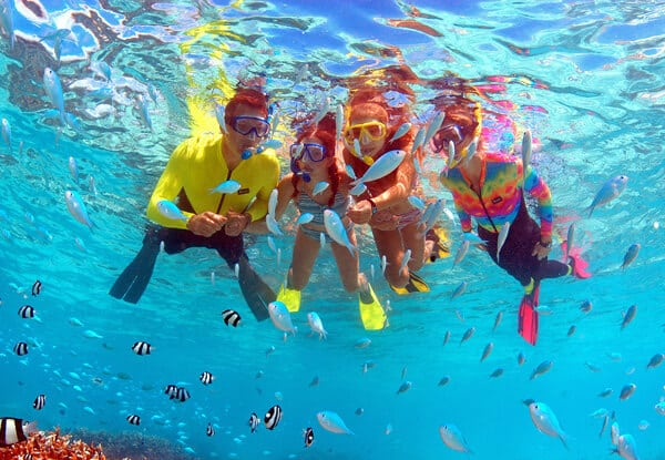 魚眼海洋公園Fish Eye Marine Park