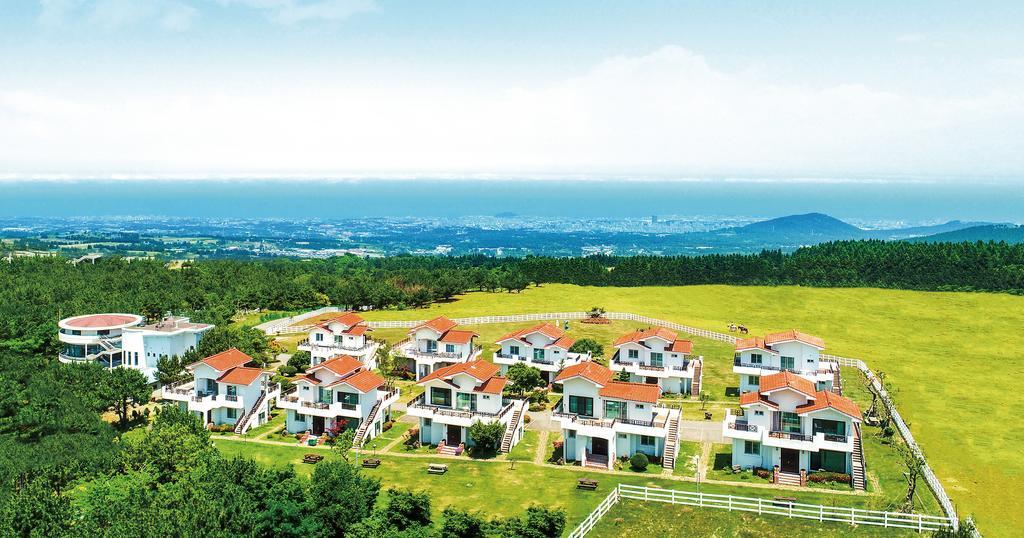 Amber Resort Jeju 琥珀濟州島度假村