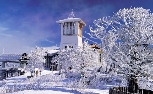 龍平滑雪道