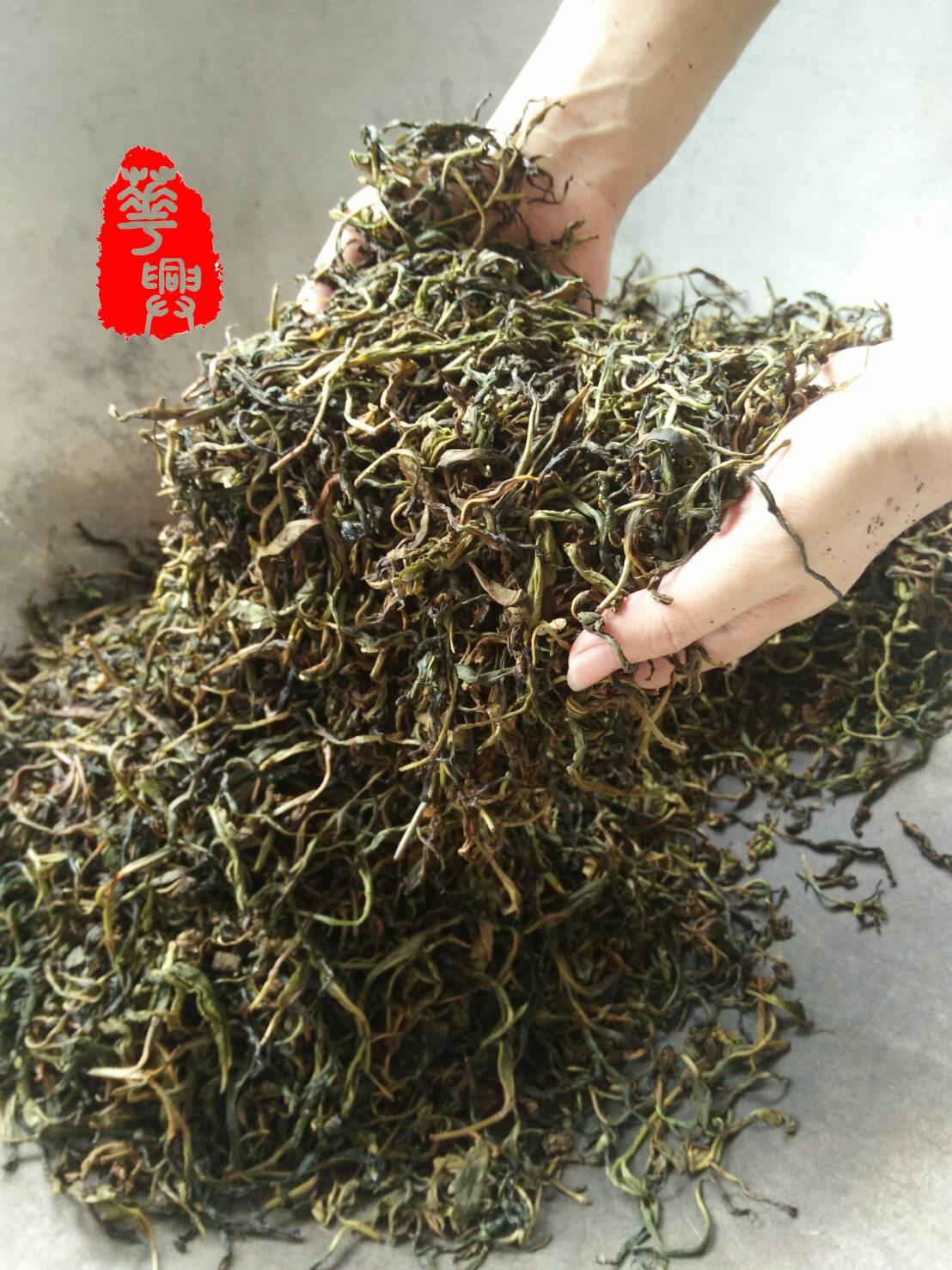 六龜台灣山茶