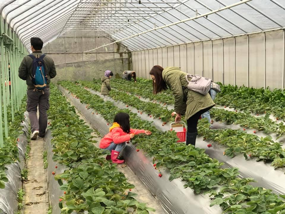 清香休閒農場