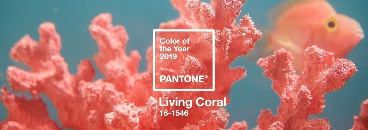 優雅又顯白!Pantone 2019年度代表色「活珊瑚橘」 6種穿搭小技巧