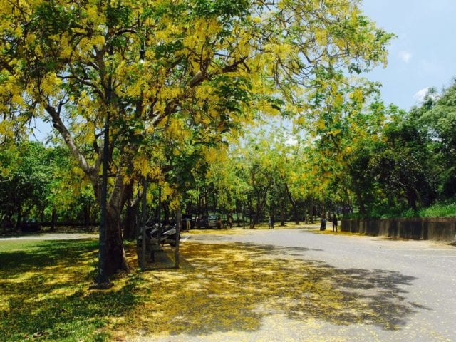 Hu_Tou_Pei_Scenic_Area