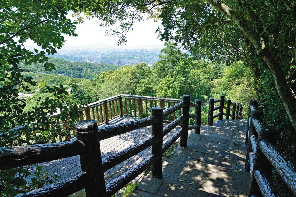 大台北賞油桐花地點