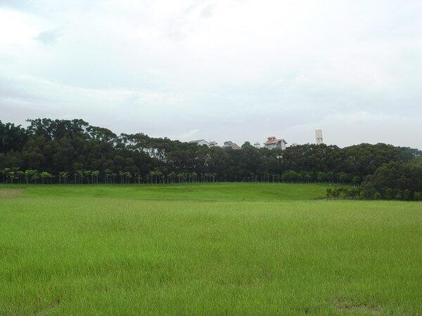 新竹免費景點 青青草原