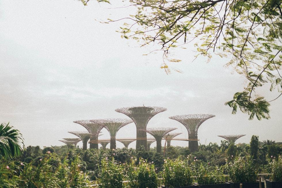 JCB卡友獨享!新加坡旅遊:景點門票優惠、免費機場貴賓室超好康