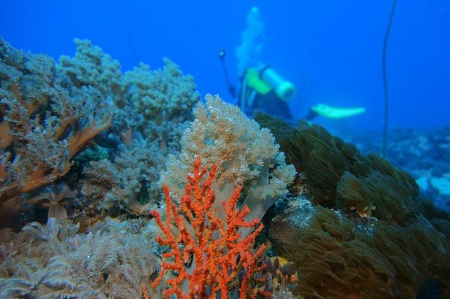 潛水景點 綠島