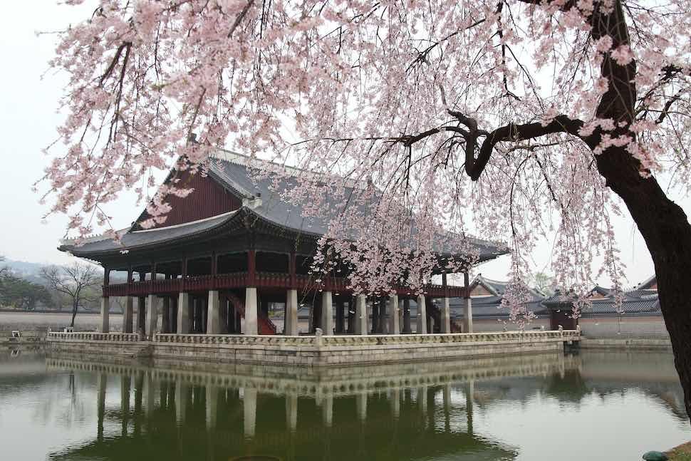 好久沒出國?韓國團體旅遊 高雄出發推薦行程,消年假這樣玩最夯