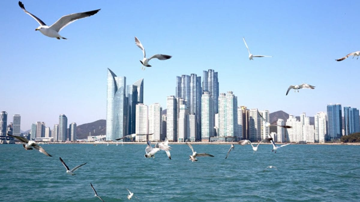 韓國避暑勝地!釜山海雲台一日遊懶人包:交通方式、必玩景點推薦