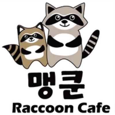 Raccoon Café