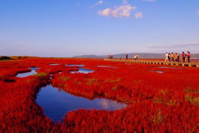 雙十連假日本行 道東最後秘境知床