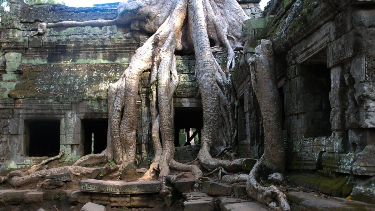 柬埔寨旅遊|柬埔寨機票、交通、必去景點、行程、住宿推薦懶人包