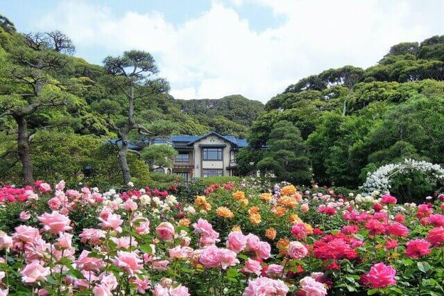 鎌倉文學館
