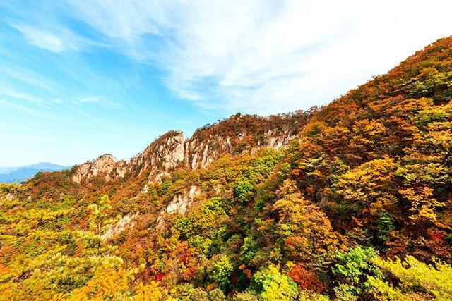 圖片來源:東南旅遊官網