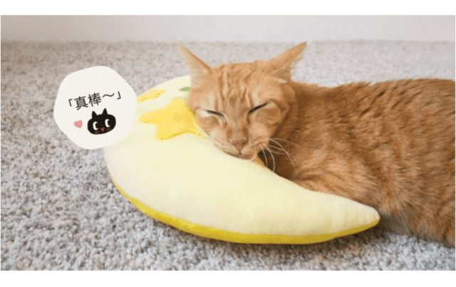 Kuroro_breast_feeding_pillow