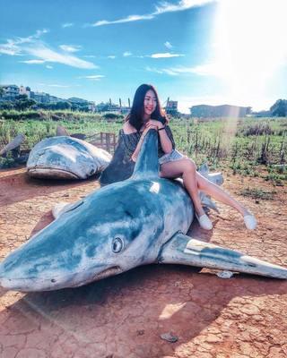 鯊魚墳場 返校 電影 打卡 景點