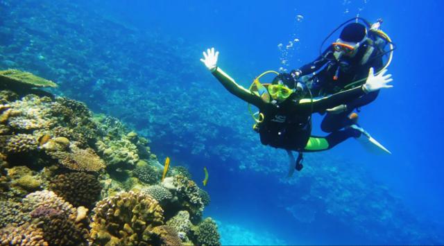 海島 潛水 沖繩