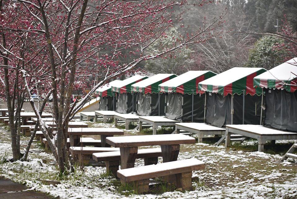 陵農場露營區