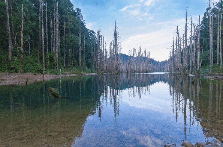 台灣天然湖