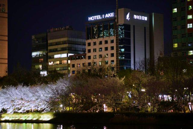 飯店與石村湖賞櫻環湖步道相襯的景色