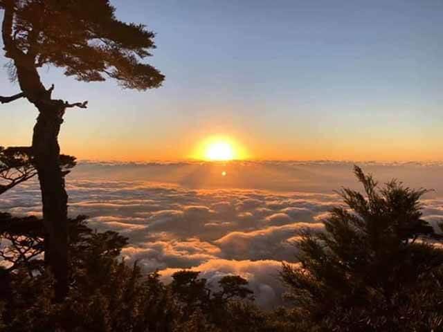 圖片來源:屏東林區管理處北大武山資訊站