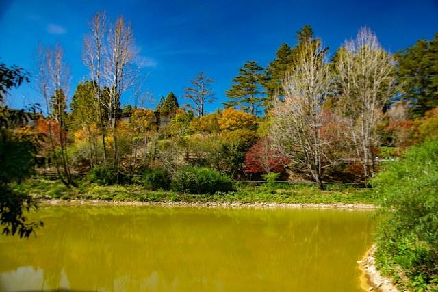 鴛鴦湖景觀步道