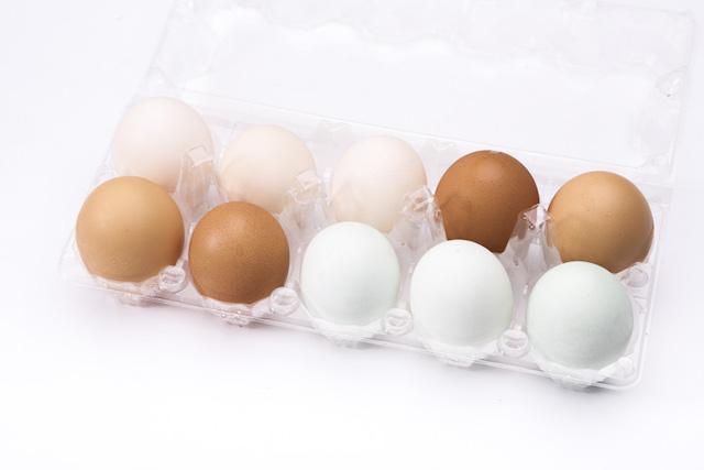 煌輝畜牧場 天然靈芝彩色雞蛋