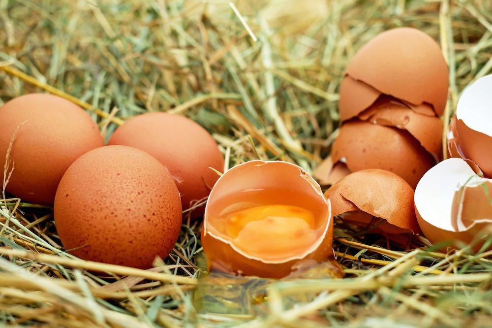 安心買好蛋!雞蛋宅配品牌推薦top10,新鮮雞蛋配送上門超方便