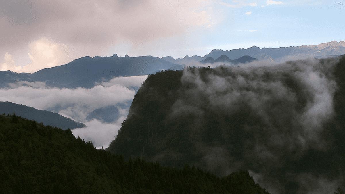 苗栗旅遊 | 觀霧森林遊樂區懶人包:交通、門票、地圖、熱門景點整理