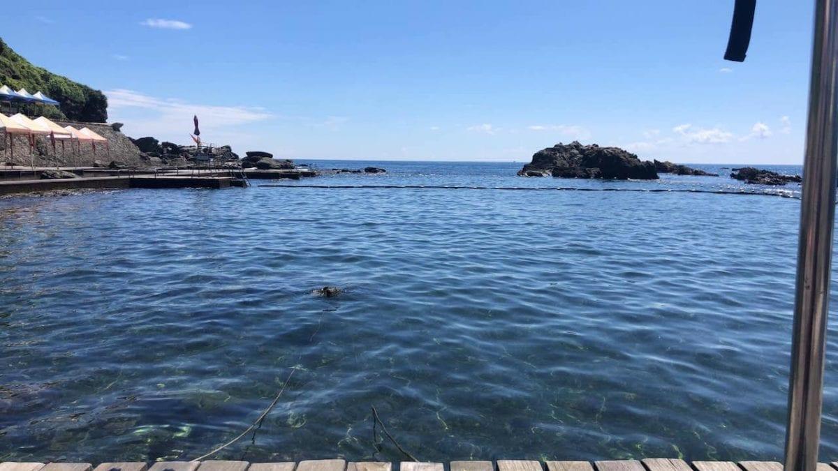 新北旅遊 龍洞灣海洋公園懶人包:交通、門票、停車、熱門景點推薦