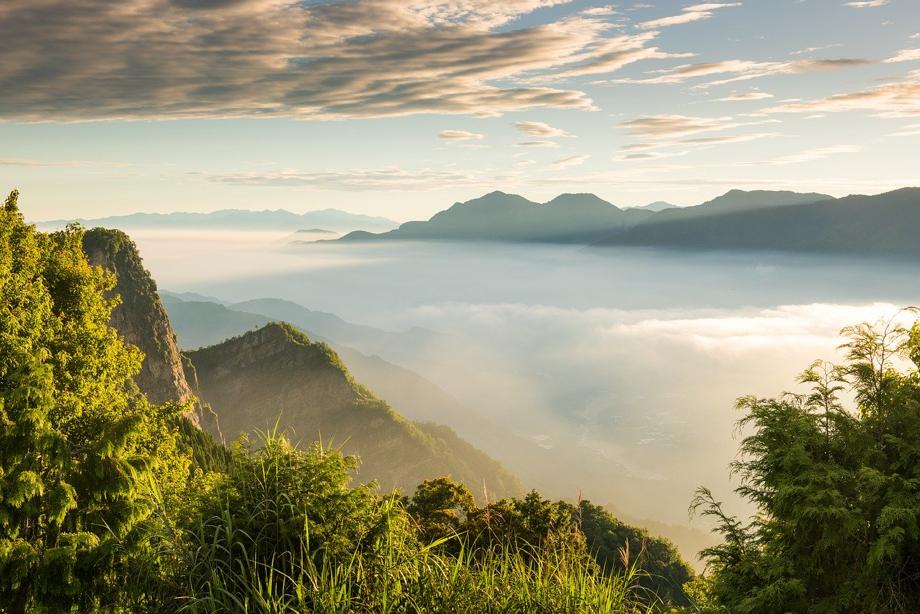 嘉義旅遊 | 阿里山露營區推薦top10,雲海、日出、夜景一次享受